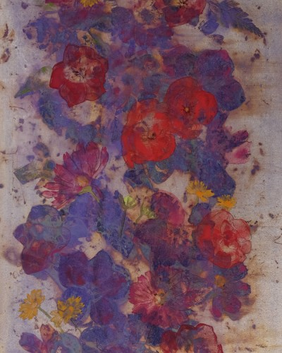 Flowers vol