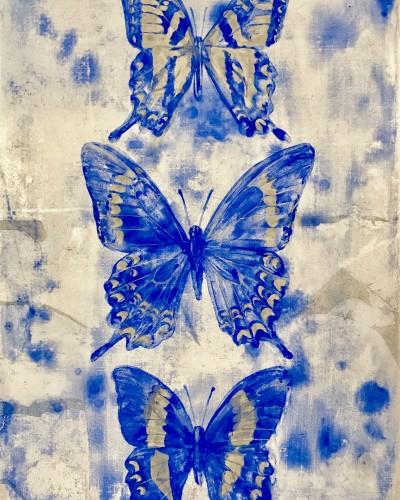 Specimen-swallowtail-